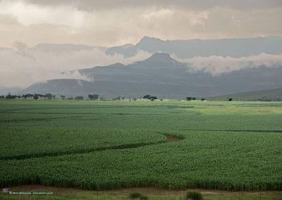 Drakensville
